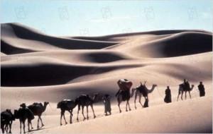 Пустыня1
