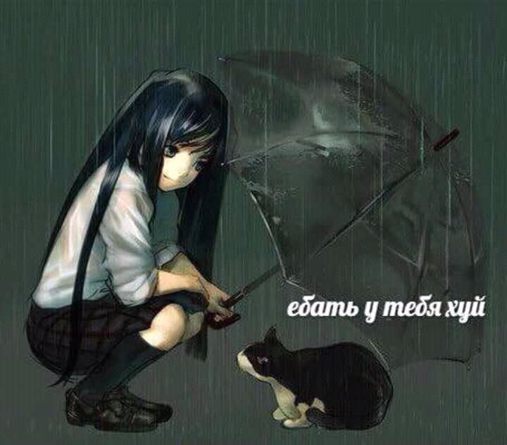 FB_IMG_15090913499492474.jpg