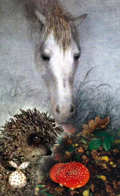 сезона картинки ежик в тумане с лошадью таймлапс-видео