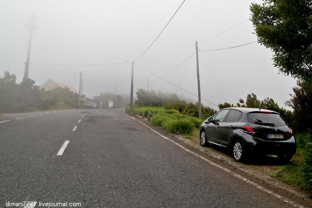 По дорогам Мадейры на Peugeot 208 -