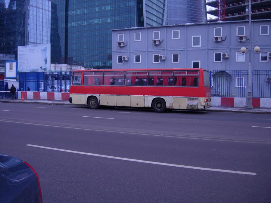 DSCN5881