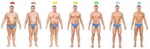 m-fat1.jpg