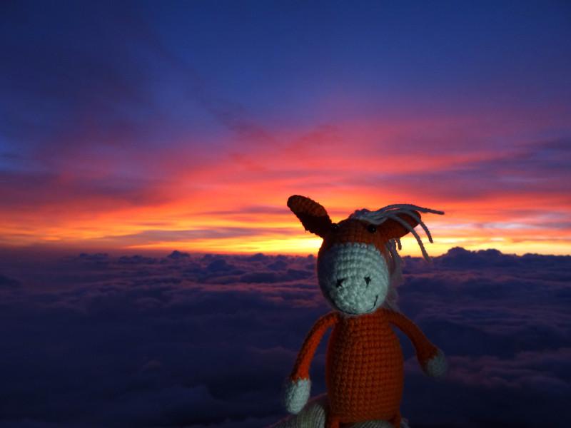 Гоша на фоне восхода и облаков