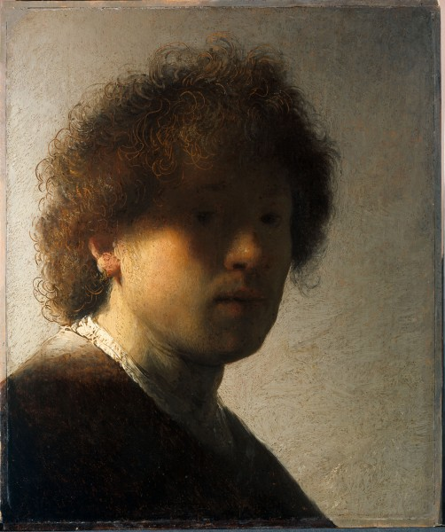 15.Автопортрет в раннем возрасте (1628) (22,6 x 18,7) (Амстердам, Госуд.музей)