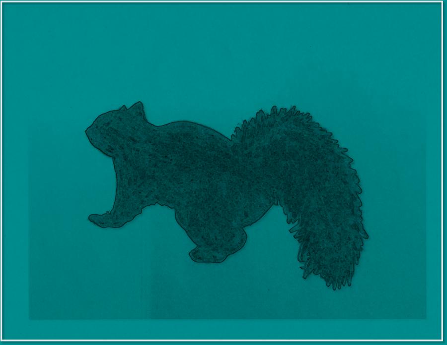 blue no background squirrel
