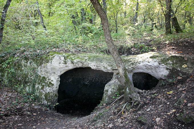 Подвал усадьбы