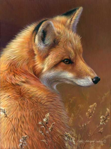 0051-red-fox