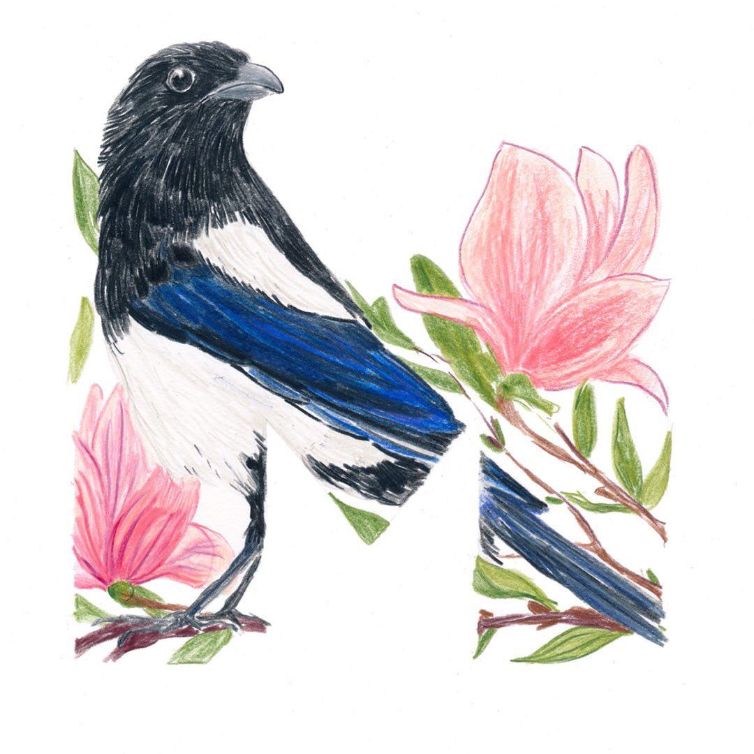 Magpie and Magnolia