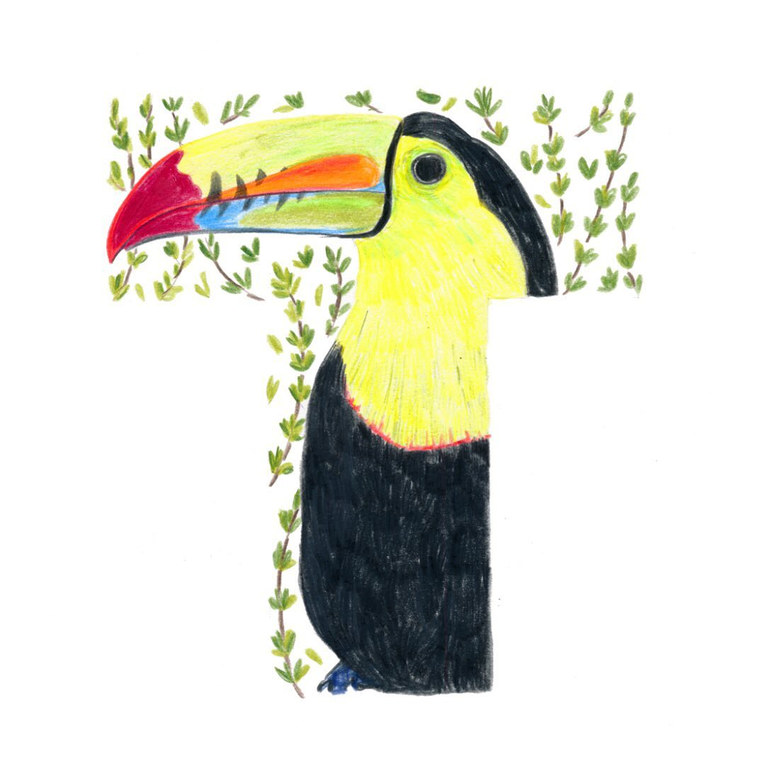 Toucan and Thyme