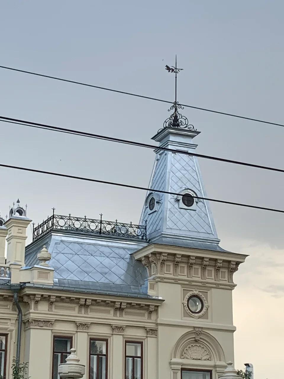 Крыша Музея изобразительных искусств