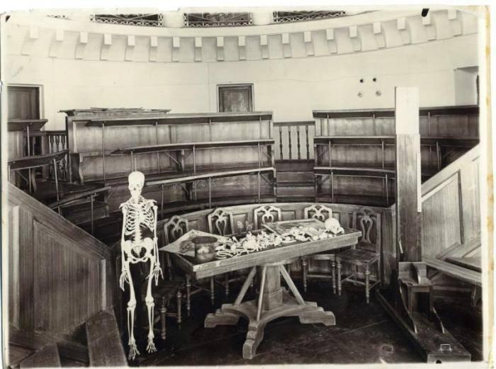 Аудитория анатомического театра Императорского Казанского университета. 1896