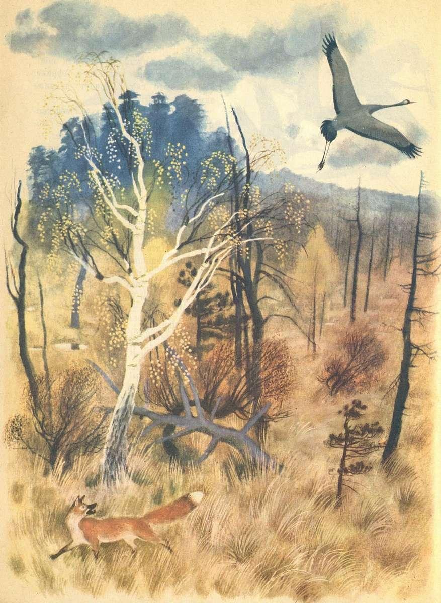 Мурзилка. 1974. № 01
