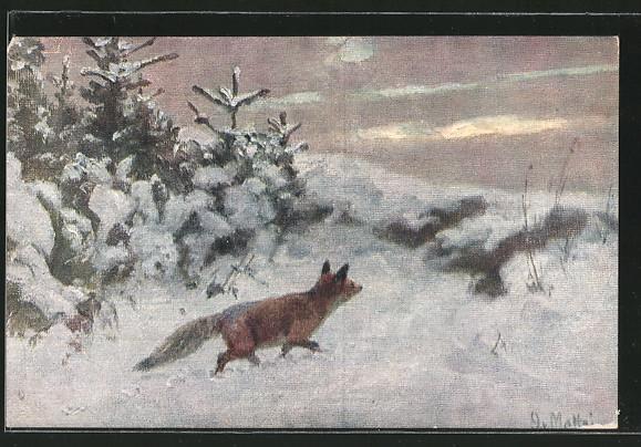 AK-Fuchs-in-der-verschneiten-Landschaft.jpg