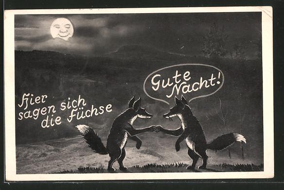 AK-Hier-sagen-sich-die-Fuechse-Gute-Nacht-zwei-Fuechse-reichen-sich-die-Pfoten.jpg
