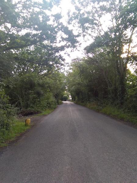 Ехать по такой дороге приятно, но требует от водителя осторожности