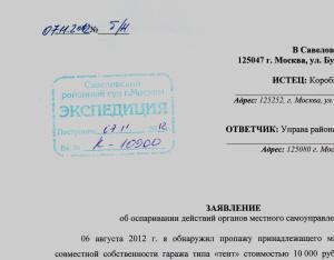 2012 11 07_заявление_1