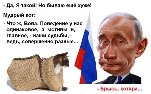 ВВП_кот в мешке