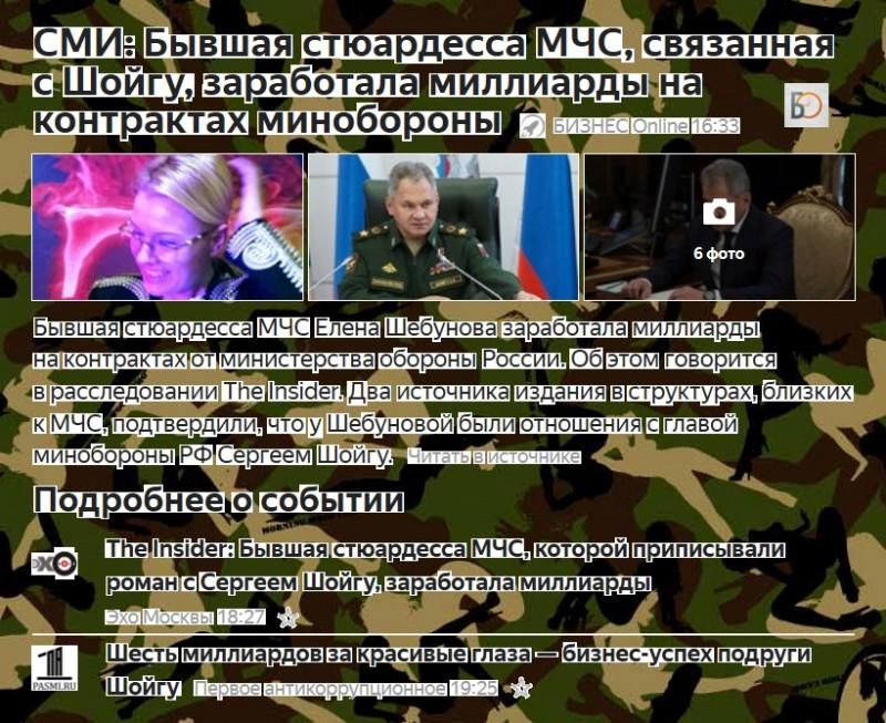 Шойгу-МЧС-Шебунова-миллиарды