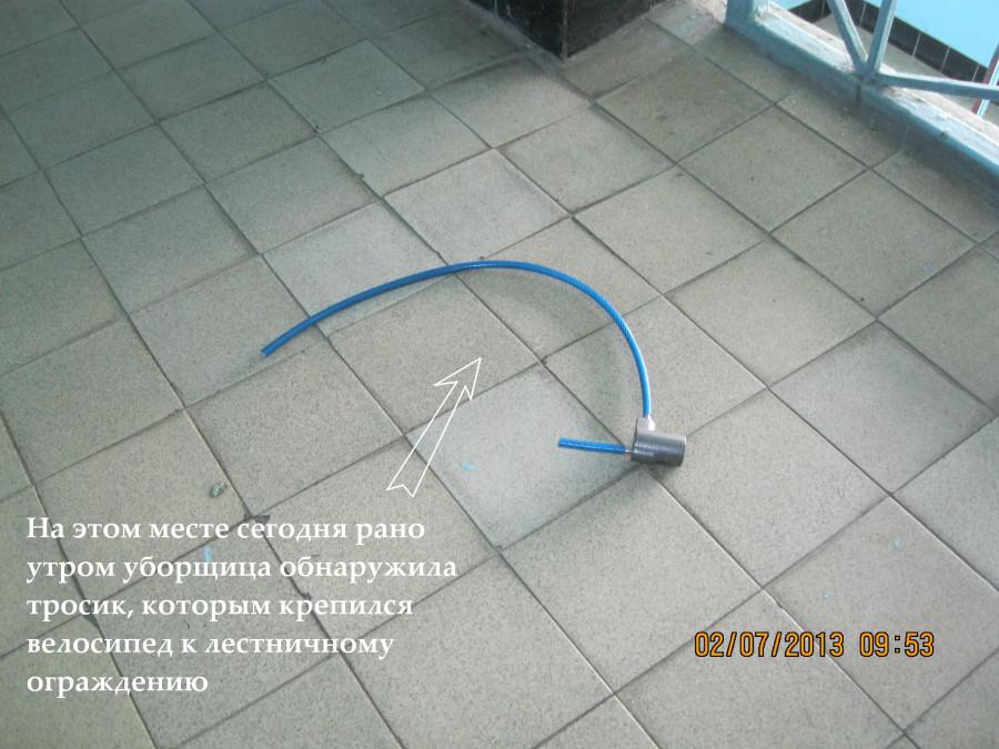 IMG_2195_1