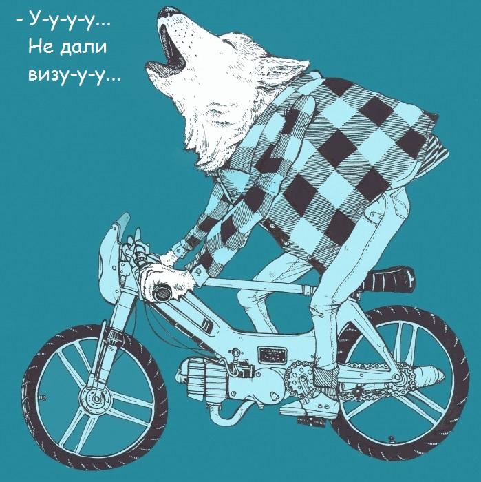 wolf_ped2_699_700_1