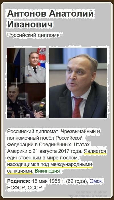 Антонов_вики_1