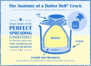 infographic-anatomy-of-butterbell