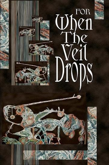When-the-Veil-Drops-final-b-fronta2[1]