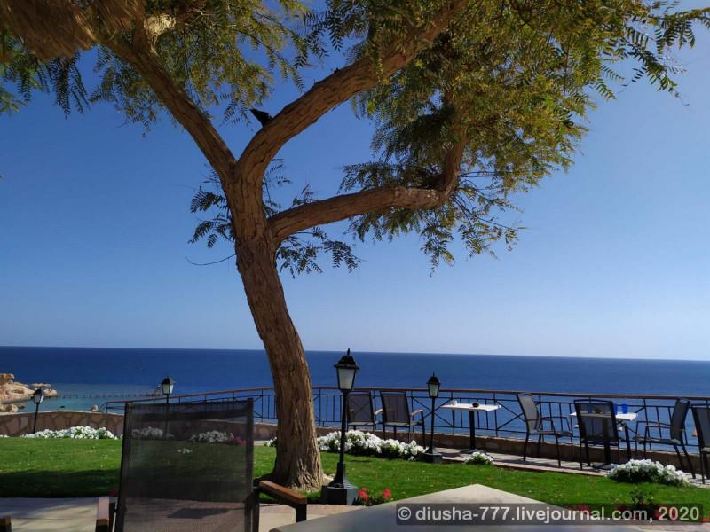 Те самые уютные столики с потрясающим видом на море, за которыми приятно было бы сидеть с ноутом, если бы там хорошо работал вайфай...