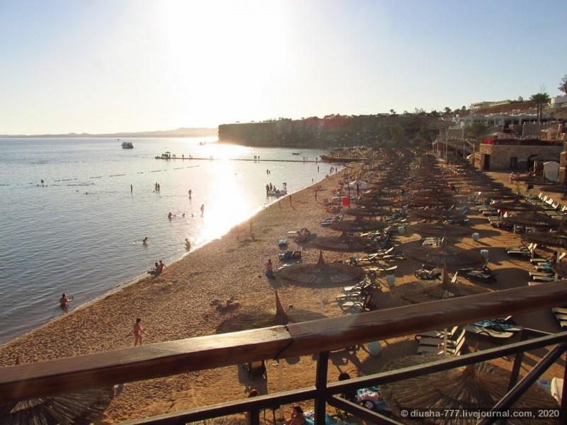 Для сравнения пляж соседнего отеля Reef Oasis Beach Resort 5*