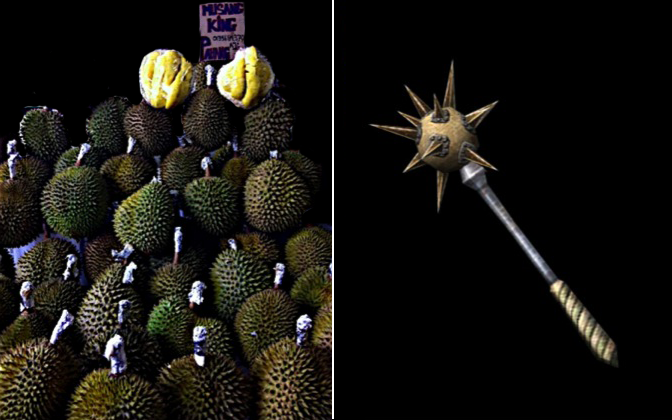 Durian flail