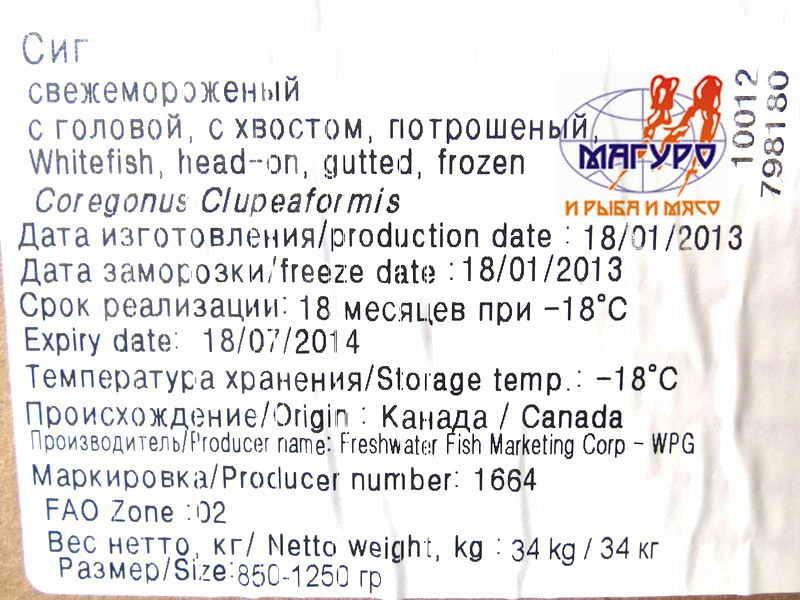 10_06_13_sig_850-1250_freshwater_fish_canada_2
