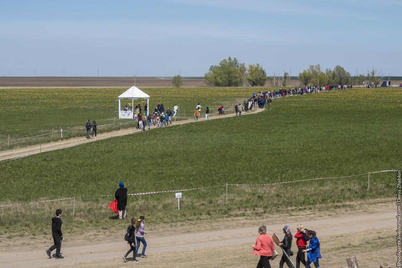Фестиваль тюльпанов 2018
