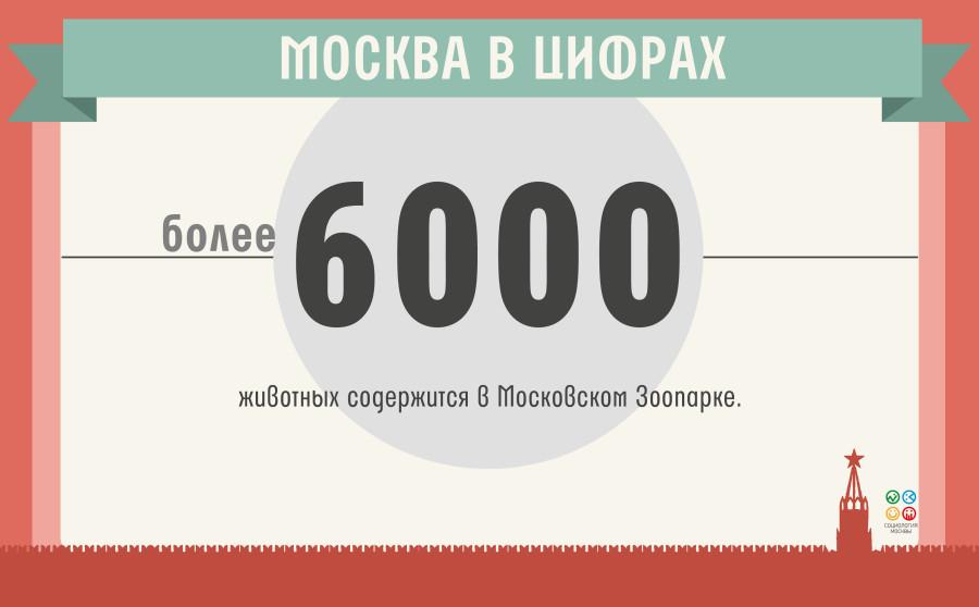 москва в цифрах(6)_19.05
