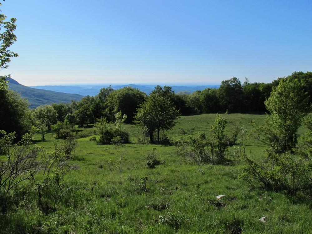 С поляны открывается вид на просторы Внутренней гряды и Бойкинский массив.
