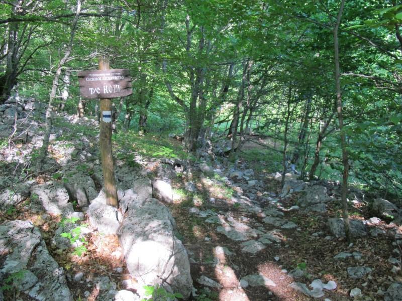Первая табличка о том, что здесь турстоянка, появляется спустя 200 метров по тропе через лесок у каких-то развалин (возможно старый Кош (загон для овец) ), а тропа после нее сразу выводит к первому кострищу и полуразвалившимся скамейкам.