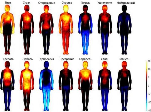 14-11-11_Тепловая карта эмоций