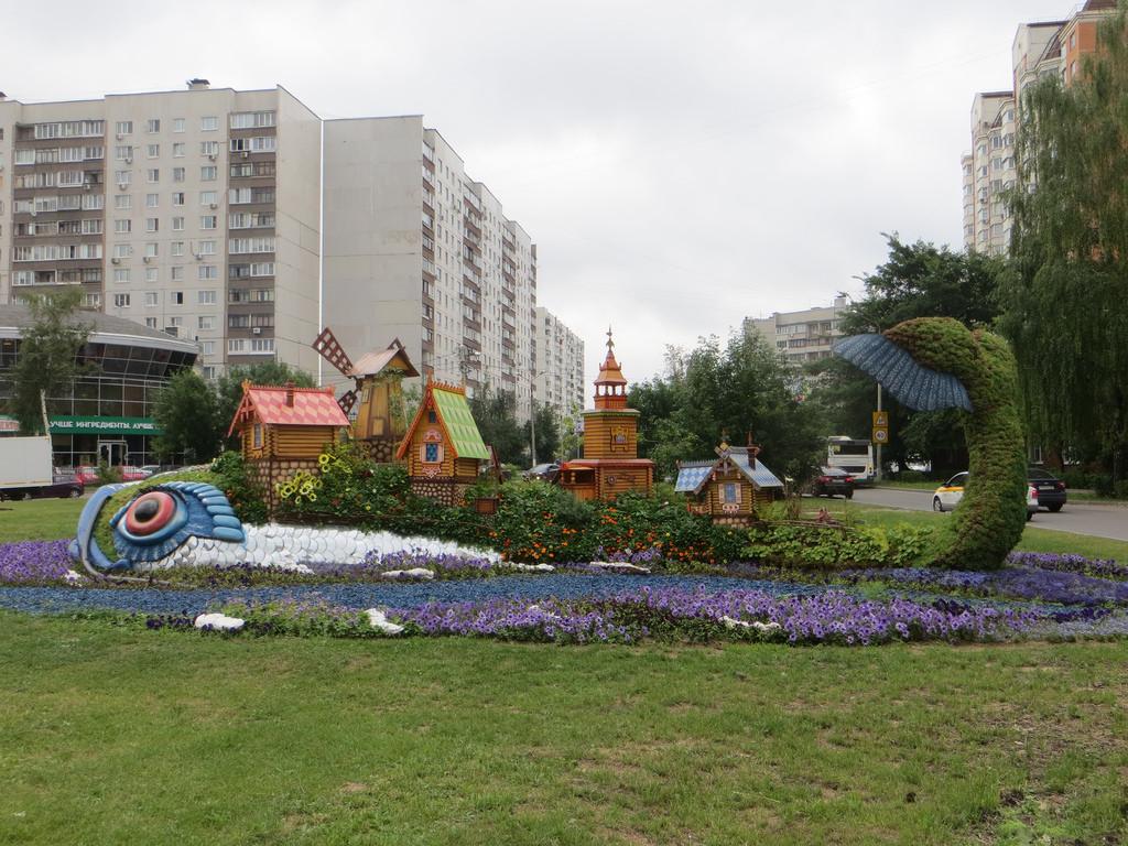 IMG_0211