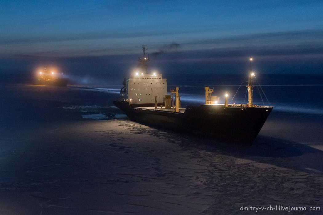 Arctic  Night_07