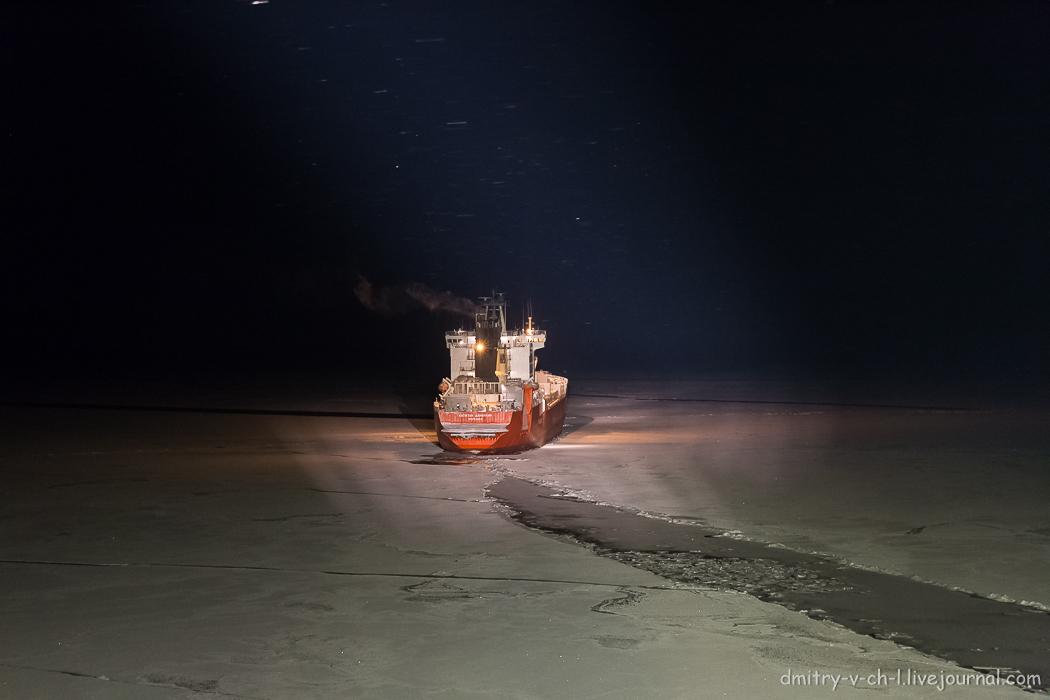 Arctic  Night_10