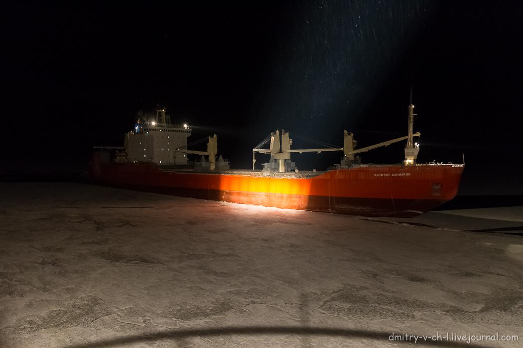 Arctic  Night_13