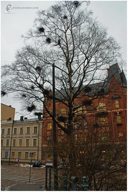 Helsinki_25_web