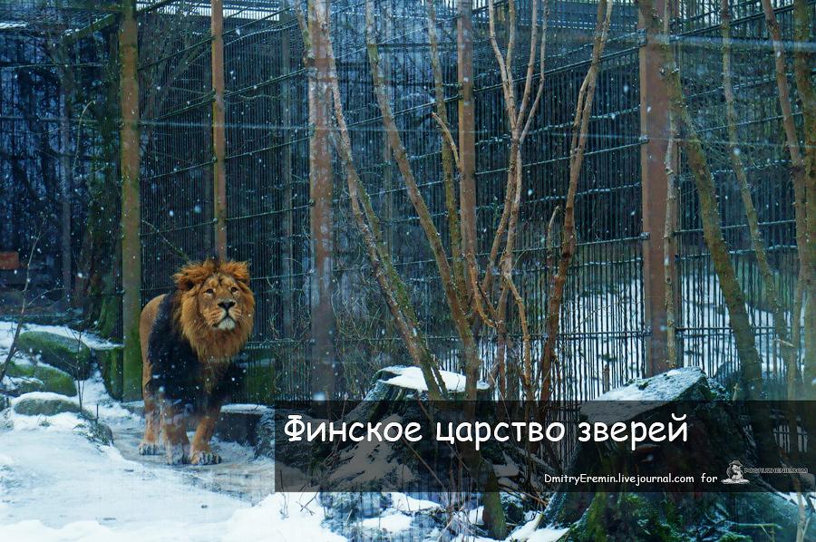 Zoo_titul_web