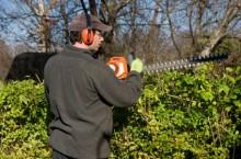 trimming-hedges-e1378403527677