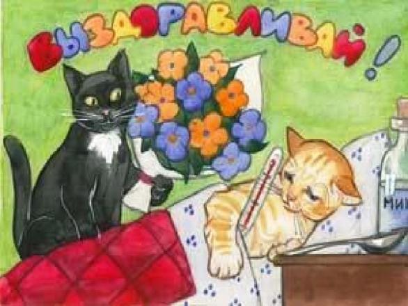 выздоравливай кошка картинки материала является