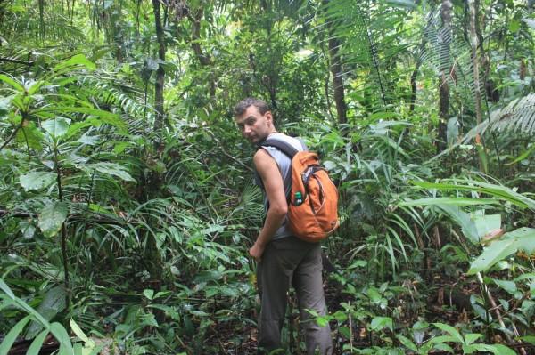 Переход по джунглям