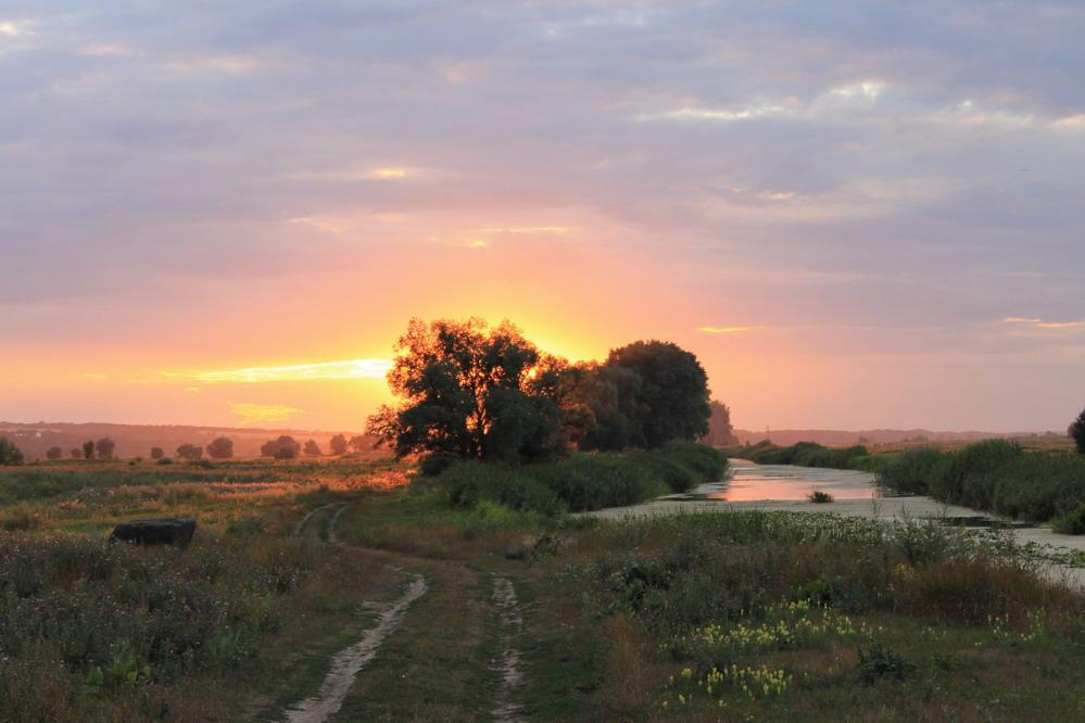 Захід сонця біля Суботова
