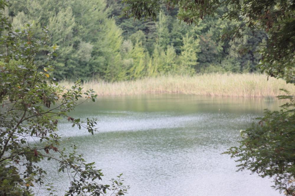 озеро біля Звенигородки