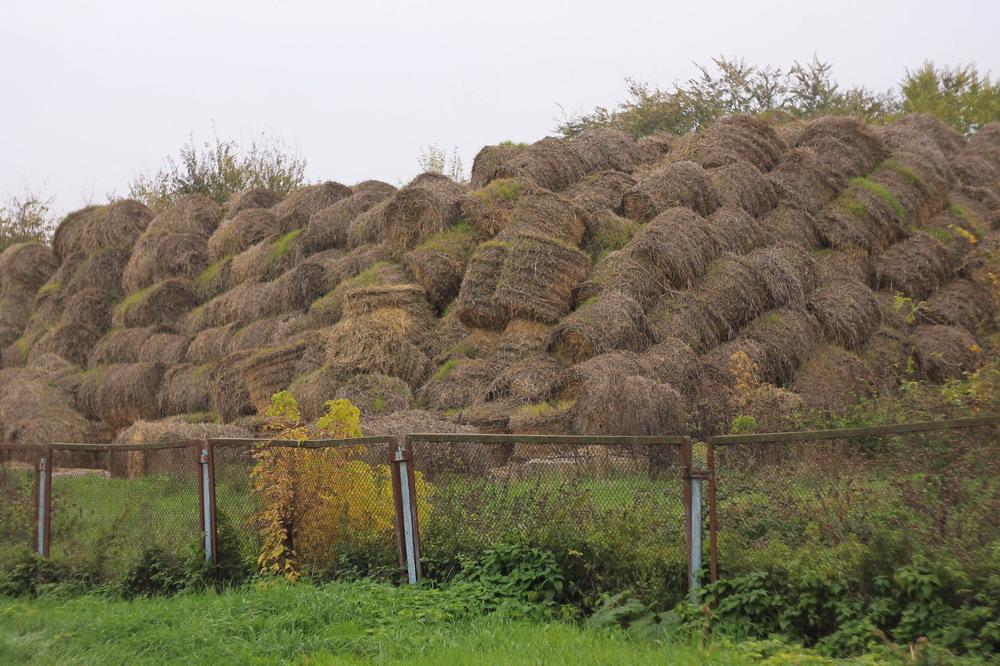 село Плоске