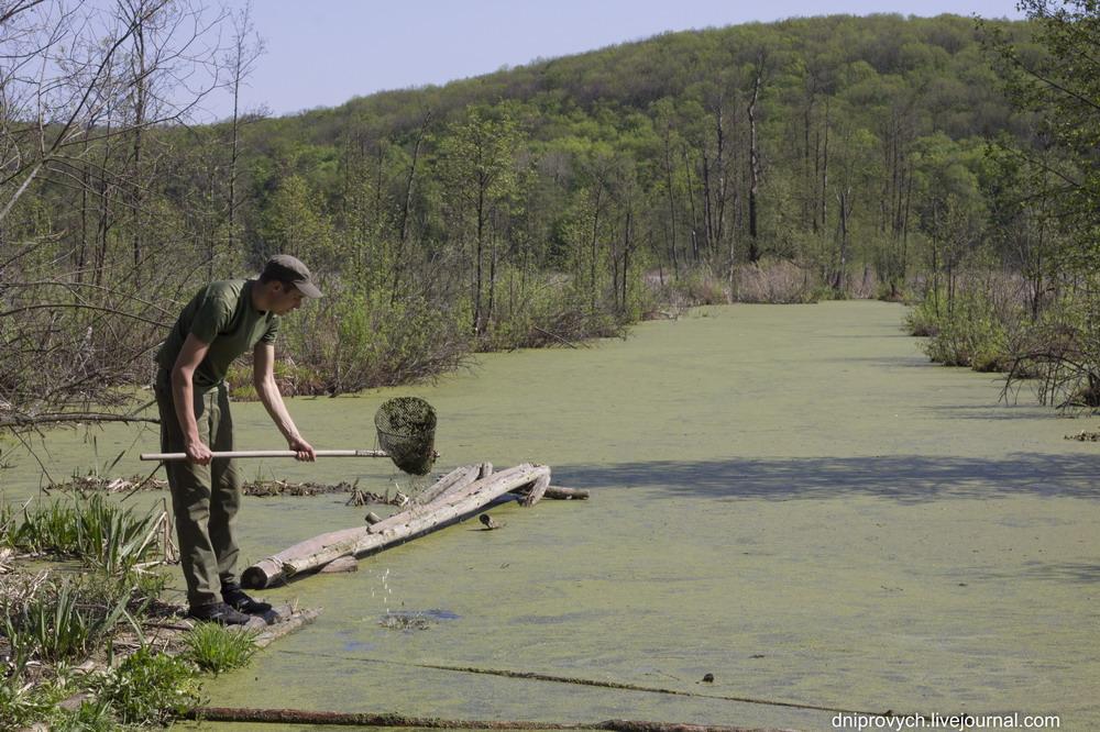 Ірдинське болото