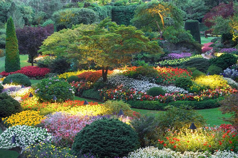 butchart_gardens2